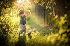 Polish Photographer And Mother Captures Magical Moments Of Her Childrens Days (jh.siesta) Tags: moments photographer mother polish days magical captures childrens