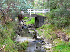 Mullum Mullum Creek (Diepflingerbahn) Tags: quarryroad bridge victoria narrowbridge mullummullumcreek mitcham cityofwhitehorse panasonic lumix dmctz80