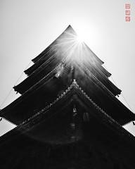 To-ji (Bill Thoo) Tags: 東寺 京都市 日本 toji kyoto kyotoshi japan nippon shrine temple bhuddist pagoda travel urban city monochrome bnw blackandwhite sony a7rii ilce7rm2 batis zeiss 18mm