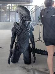 MVIMG_20180526_191312 (tastyeagle) Tags: sanjose california unitedstates fanime fanimecon anime cosplay 2018 alien xenomorph