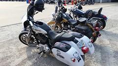 06/07/18 Ozark Harley-Davidson Bike Show (Adventurer Dustin Holmes) Tags: motorcycle bikeshow motorcycleshow hellokitty white girls girly missouri da5tt dp5cl harleydavidson saddlebags