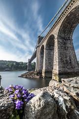 Menai Bridge (Nathan J Hammonds) Tags: menai bridge wales anglesey strait water uk architecture nikon hdr flower rocks sky clouds towering building