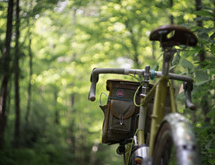 Green tunnel (koperajoe) Tags: romanceur bokeh summer bicycle forest woodland swirlybokeh bubblebokeh 650b velo