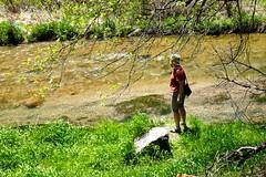 Catherine along Spearfish Creek (ali eminov) Tags: southdakota forest blackhillsnationalforest highways spearfishcanyonscenicbyway creeks spearfishcreek catherine