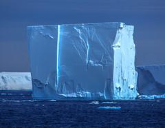 0I7A5084.jpg (Murray Foubister) Tags: icebergs summer antarctica travel 2015