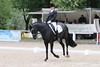 _MG_7941 (dreiwn) Tags: dressage dressur dressuur pferd reitturnier turnierreiten pferdesport horse horseback horseriding equestrian reitverein dressurprüfung kandare doublebridle reiten pferde reitplatz ridingarena