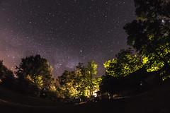 (Viktor Kiss) Tags: stars sky nature night fisheye 8mm nikon d850 samyang 35 long exposure wide angle nightscape test hungary trees lights shadows milkyway galaxy