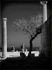 Columns (mirsavio) Tags: greece rhodes fujifilmxt20 blackandwhite columns archaeology tree