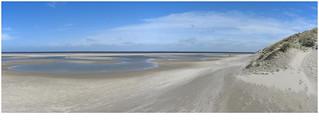On the beach  Texel