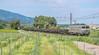 Amen...moi des rails/Douzens (PUECH Mathieu) Tags: alstom alsthom bb7200 bb7200pv freight fret sncf