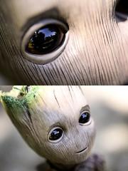 in his eyes (Vlastelin Nichego) Tags: hottoys groot babygroot