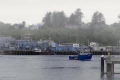 Port of Newport (buffdawgus) Tags: oregoncoast portofnewport oregon lightroom6 newport yaquinabay topazsw harborscene canonef24105mmf4lisusm canon5dmarkiii harbor