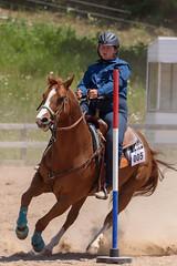 JBC_6196.jpg (Jim Babbage) Tags: krahc bethany appaloosa horses horseshow 2018
