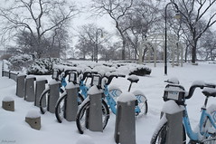 Chicago III #My bike was inoperational (Juca.pt) Tags: jucapt 2014 chicago chicagoiii vehicles