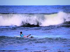 Missed this one (thomasgorman1) Tags: surfer woman surf waves crashing sea ocean canon hawaii honolii beach surfing watersports hilo island coast shore pacific