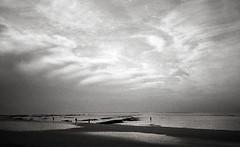 (Alfonso Lazo) Tags: olympus xa2 hp5 xtol 11