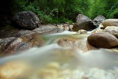 Stones in the creek (Darea62) Tags: river stream nature creek stones forest rocks trees longexposure wood water malbacco seravezza versilia alpiapuane montealtissimo