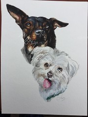 #Puppylove #Instapuppy #Puppypalace #Doglovers #Puppyeyes #Doglover #Instapuppies #Puppydog #Puppygram #Doggie #Puppyoftheday #Doggy #Doggylove #Cutedog #Cutedogs #Puppylife #Doggies. (rubywatercolor) Tags: doggies puppylove instapuppy puppypalace doglovers puppyeyes doglover instapuppies puppydog puppygram doggie puppyoftheday doggy doggylove cutedog cutedogs puppylife