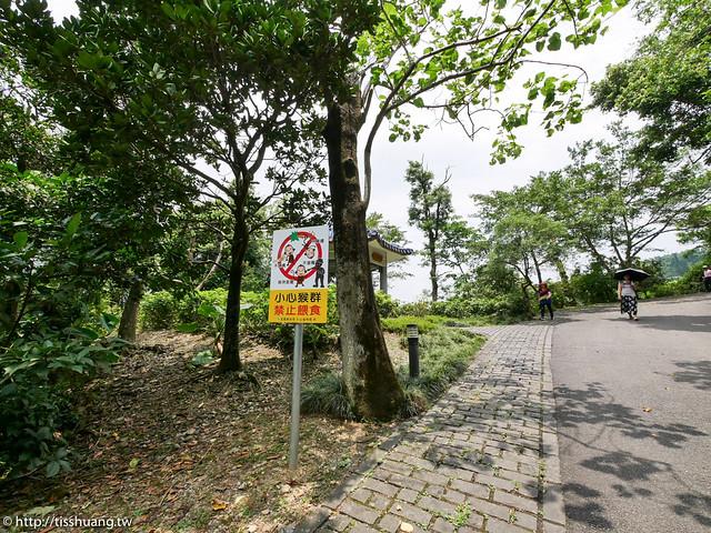 仁山植物園-1290336