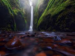 Oneonta Falls (Christina Angquico) Tags: oneontafalls columbiarivergorge gorge oregon pacificnorthwest waterfall oneonta olympus christinaangquico 918mm