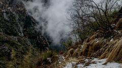 The Storm Arrives (sakthi vinodhini) Tags: settlement annapurna nepal himalayas abc trek backpack mountains hills greenery ngc forest landscape mountain tree dark deep bamboo wet rainy grass hdr snow storm wind rain elements rocks