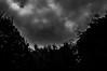 The darkness (Marco van Beek) Tags: darkness nature holland europe beautiful world nikon d5000 afs dx nikkor 18200mm f3556g ed vr ii