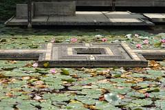 2018-05-FL-187630 (acme london) Tags: carloscarpa colouredstone colouredtiles concrete grave graveyard italy lake landscape searoses stonemosaic tombabrion water