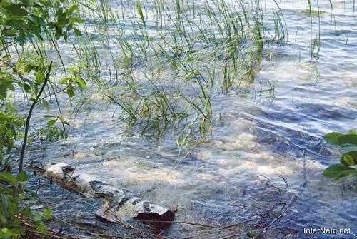 Шацький Національний Природний Парк Озеро Пісочне Берег InterNetri  Ukraine 159