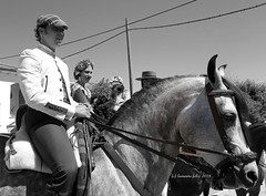 Jinete y caballo.Romería de San Isidro. Alameda. (lameato feliz) Tags: alameda fiesta romería jinete caballo