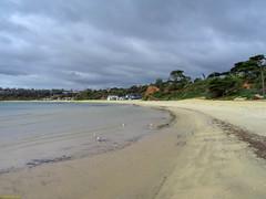 Mother's Beach, Mornington. (petebond_au) Tags: seagulls cliffs seascape xz2 melbourne mornington mothersbeach beach sky sand bay water landscape sea phillip port