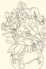 Still life 20180528 1 (danielborisheifetz) Tags: art drawing sketch pencil stilllife flowers