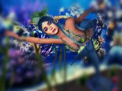 Under the sea! (☾☾Ṁṣ Ṃȭłłỳ ☽☽) Tags: secondlife hot cute sexy mesh beauty fashion cutie portrait sweet catya catwa lara maitreya me selfie alone justme heterochromia mermaid fantasy dressup