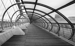 (cherco) Tags: woman bridge lines light lonely alone arquitectura architecture arch composition composicion blackandwhite blancoynegro vanishingpoint perspectiva perspective loner solitario solitary silhouette silueta shadow sombra street shadows solo city ciudad zaragoza expo repetition repeticion urban spain