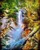 https://goo.gl/maps/QX6TYMA95Qx  #travel #holiday #trip #traveling #旅行 #度假 #亞洲 #Asian #Malaysia #馬來西亞  #여행 #ホリデー #휴일 # #праздник #путешествие #วันหยุด #การเดินทาง #Waterfall #瀑布 #น้ำตก #водопад  #폭포 #滝 #airterjun #Jeramtoi #nature (soonlung81) Tags: trip 滝 วันหยุด น้ำตก 度假 瀑布 traveling путешествие malaysia ホリデー 폭포 휴일 馬來西亞 водопад การเดินทาง праздник holiday airterjun 旅行 nature jeramtoi 여행 亞洲 waterfall travel asian