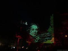 Festival of Lights 2018 (Zwickau) - Projektion in die Bäume im Schumann-Park (Schumann Platz) (cd.berlin) Tags: sonyhx90v zwickau 900jahre sachsen saxony städtetrip stadtansichten deutschland germany festivaloflights2018 festivaloflights fol lightfestival fetedeslumieres illumination lightpainting projection citylights lightart lightphotography lightjunkies nighttime nightphotography nights picofthenight nightshot colorful colours livecolorfully colorsplash coloursplash artlover publicart urbanromantix cityview sightseeing urbanandstreet urbanart wunderschön traveler travelandlife photographylover positivevibes atmosphere schumannpark schumannplatz schumann noten nofilter cdberlin