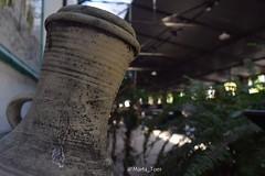 Museo del Vino 🍇🍷 #delauvalamesa #traditional #vendimia #grapes #palominofino #px (marta.toes87) Tags: grapes traditional delauvalamesa vendimia px palominofino