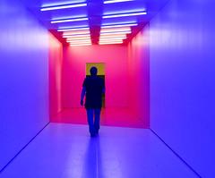 Art exhibition (Jane Olsen) Tags: artinstallation room pink man eskargallery calgary exhibit