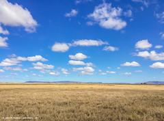 2017.06.25.2704 Serengeti Plain (Brunswick Forge) Tags: grouped 2017 africa safari tanzania serengeti nature sky air iphone favorited
