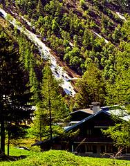 Chalets at Le Tour (Fr Paul Hackett) Tags: mountain snow streak trees conifers sunshine chalet