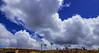 cloud (johwaldcortes) Tags: nubes decierto palmas