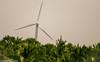 Green Energy (Balaji Photography - 4.9M views and Growing) Tags: green greenenergy windmills windturbine wind fans canon beach kanyakumari india
