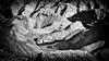 Atacama (Jan Jungerius) Tags: peru atacama desert wüste woestijn truck lkw vrachtwagen shadows schatten schaduwen mountains berge bergen blackandwhite blackwhite zwartwit schwarzweis noiretblanc nikond750 tamronsp2470mm panamericana landscape landschaft landschap