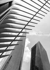 WTC II (jagsayago) Tags: worldtradecenter wtc nyc newyork architecture building sky city window