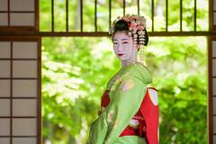 Maiko Mamesaya (Shibata Okiya) of Gion Kobu (balbo42) Tags: 2018 maiko gion toshinana gionhigashi gionkobu geisha fujifilm hinayuu kamishichiken mamesaya kyoto japon umehina pontocho miyagawacho ichiyuu geiko xh1 japan april