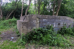 Former WWII railway loading ramp, Penistone.  May 2018 (dave_attrill) Tags: loadingramp wwii penistone railway disused remains abandoned overgrowth barnsley sheffield southyorkshire greatcentral gc gcr electrified mainline passenger goods beeching cuts report sheffieldtomanchester woodhead woodheadroute closed closed1970 may 2018 sheffieldvictoria 1954 1970 1981 wortley oxspring class76 class26