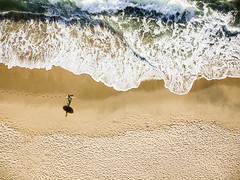 Textures (carlos.aantunes) Tags: drone dji aerial beach surf surfer ericeira portugal ocean waves sea green shadow sunset textures