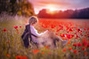 Im Mohnfeld - in to the poppy field (tulpe-production.de) Tags: woman poppyfield mohnfeld sundown red reading nature natur airy light nikond850 nikon105mm14 availablelight relax