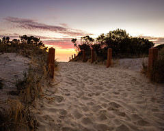 Walk With Me (BTAdelaide) Tags: nature natural light beautiful beach beachlife adelaide sunset seascape seaside path ocean southaustralia australia winter goldenhour fujifilmxt2 colourful landscape landscapephotography