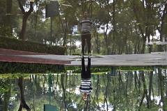 Espejo (Evelio AD) Tags: mirror water portrait gente faces hombre mexicano mx cdmx visitmexico green amigo urban park parque latino