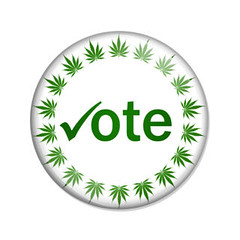 Oregon Cannabis: Using the Initiative Process to Legalize Local Marijuana Businesses (jodieshazel) Tags: green leaves leaf marijuana cannabis weed grass pot medical drug narcotic dope nature herb button circle shiny white vote elect election choice option pick legal legalize check mark symbol icon isolated isolation overwhite copyspace message